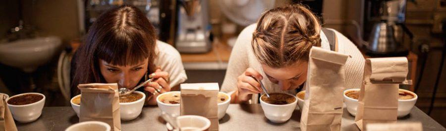 catador de café, cafe , maquina de cafe , tipos de cafe , precio del cafe , catas , cafe italia , catar , cafe cafe , que es el cafe ,el cafe es una especie de ,cómo se dice café en inglés ,barismo , caracteristicas del cafe , todo sobre el cafe , con que colores se hace el cafe , cafe tipos , que es catador, FOREXPROS CAFÉ, coffee