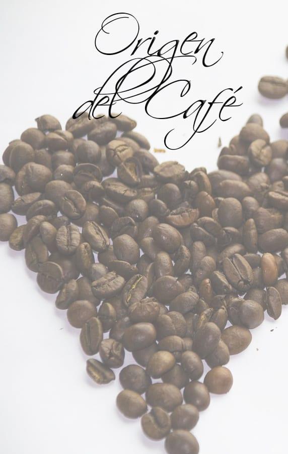 ☕  Descubre el ORIGEN del CAFE en el MUNDO - ForexPros café