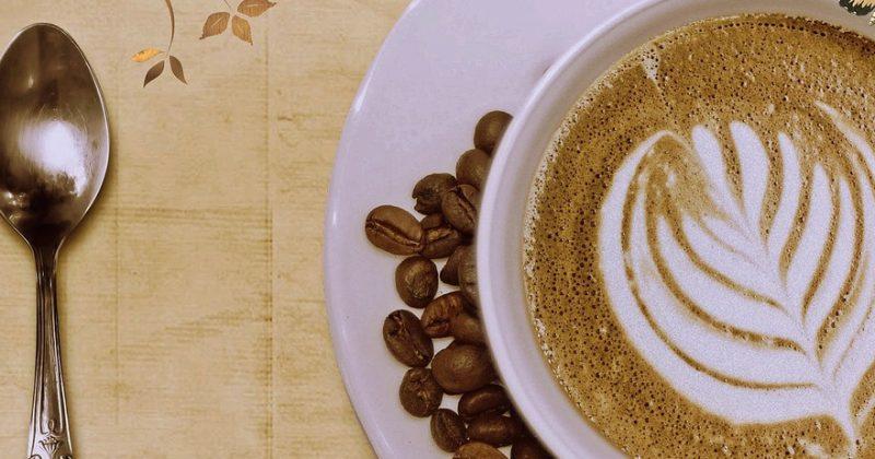 Taxonomía del Café