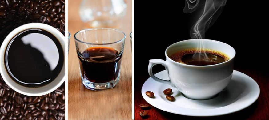47 Cosas que No Sabías | Todo Sobre el Café!